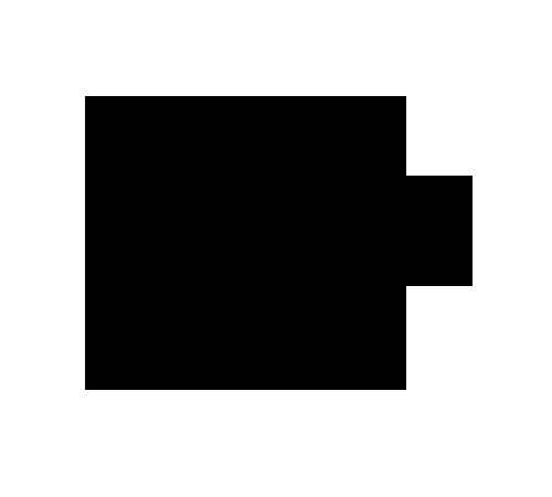 firma-liz-3